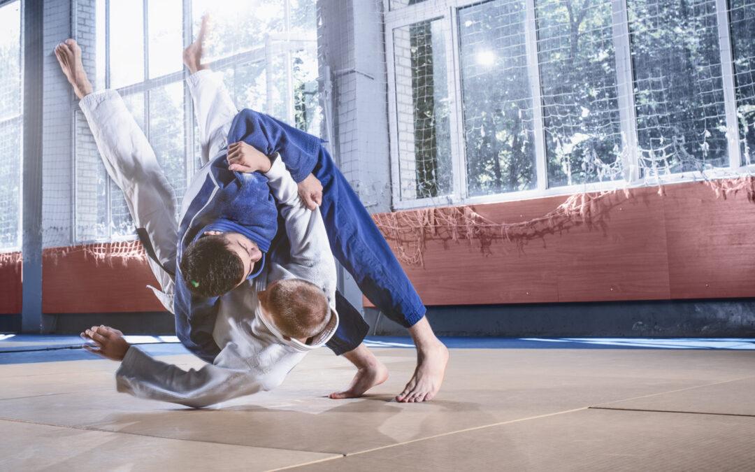 Judo Bezirkseinzelmeisterschaft